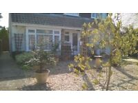 AVAILABLE NOW - Large single/double in lovely house