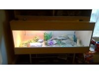 4ft Vivexotic vivarium(Reduced)
