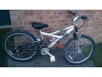 """raleigh max bike 24"""" wheels"""
