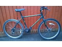 Raleigh Outland...Mans Mountain Bike..... A reliable ride for only £45.00....