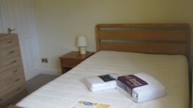 Large double room in Postgraduate house near UEA and John Innes