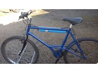 GENTS ADULT ROAD /TOWN MOUNTAIN BIKE over size 21 INCH FRAME lots of new extras