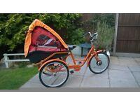 Electric Trike Bike child transporter cargo transporter