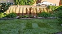 Get A New Lawn! Available Immediately! $0.85 per SQFT