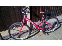 "Girls Salcano 24"" bicycle"
