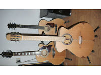 Acoustic Clover Guitar Nylon Strung Jazz Classical (Fishman)