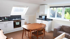A beautiful light and airy studio up in the loft of a wonderful house. BILLS INCLUDED!!!