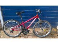 Forsale child mountain bike