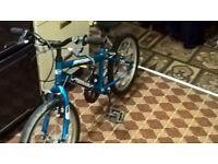 Blur boys mountain bike