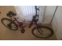 Appolo awesome Bike 18 purple gears mountain £20 ono