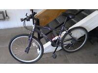 Bicycle Apollo+ Accessories