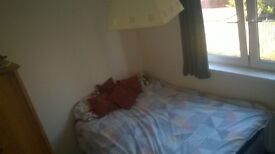 Bright warm,double room to rent,