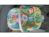 Bright Stars Baby rocker, grows from infant to toddler. 2 recline positions.