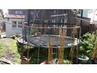 10ft Jumpking trampoline, frame free, new springs and mat £25, net damaged