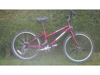 PINK MERIDA DAKAR 550 GIRLS BIKE