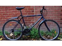 Roadmaster Mountain Bicycle