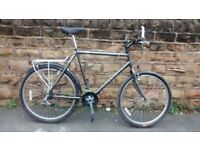 """RALEIGH NORTH CAPE MTB large 23"""" frame"""
