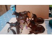 bestwick horses