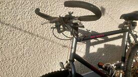 large raliegh bike