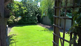 Acer Gardening: Environmental Gardening Services At Good Rates