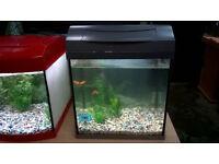 25 Litre Tetra fish tank aquarium setup *Just add fish*