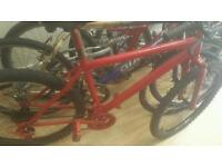 Mountain bike medium frame