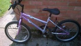 Universal Indigo girls bike