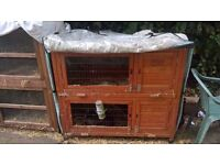 14 Rabbits, 7 hutches males and females to be sold in groups or seperately.