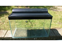 Fish Tank and Accessories (61cm Width, 38cm Height, 30cm Depth)