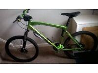 adult 220 felt bike