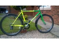Mountain Bike..Straightforward Clean Bike in Full Working Order, with Mudguards Fitted..DayGLO look