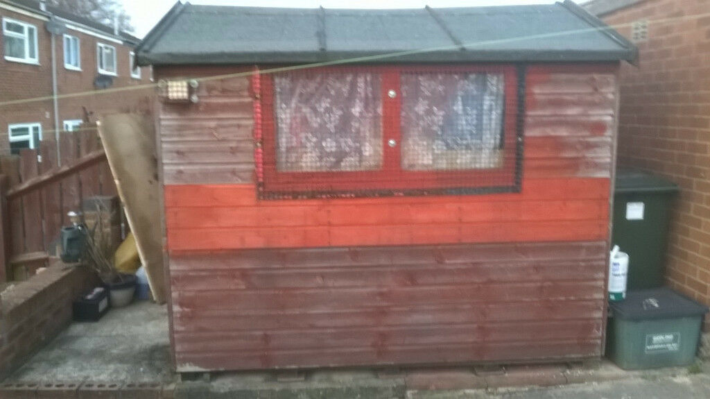 8 x 4 strong wooden garden shed very good condition - Garden Sheds Very