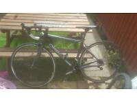 Orbea road bike