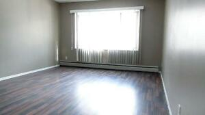 Newly renovated 2BD for just $1085 plus free internet!!! SD $350 Edmonton Edmonton Area image 5