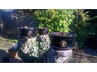 3 garden pots, black with motifs, £15 for 3, not required as moving to a flat. BARGAIN