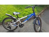 Kids Bike - Trek 20in wheel size