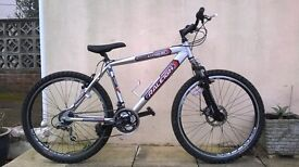 Hardtail Raleigh Lithium bike