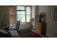 Barnes Flatshare - Large Double Room