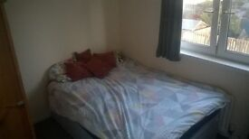 Room to rent with double bed in spacious flat