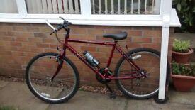 Boy's Bicycle