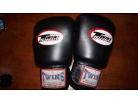 Twins Gloves 16oz