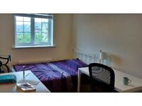 Room available for July in Reliance Way