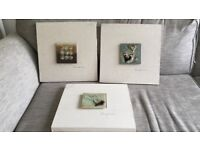 Set of x3 canvas pictures