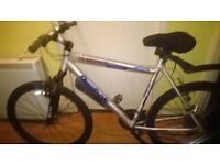 TWO ADULT BIKES PLUS BYCYCLE ACCERIORERISES FOR SALE