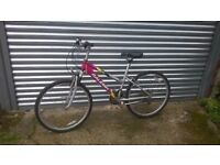 Raleigh UK bike