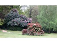 Full Time or Part Time Assistant Gardener wanted