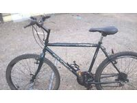 GENTS ADULT MOUNTAIN BIKE HAS 20 INCH FRAME 26 INCH WHEELS ready to go