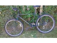 Mens Mountain Bike, Raleigh Outlander, cheap