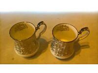royal windsor bone china 25th anniversary mugs pair of