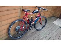 Motor mountain bike 50cc